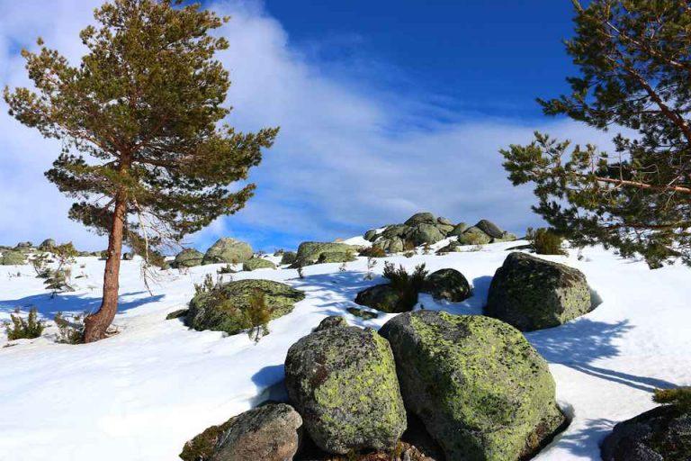 snow-2090754_1280